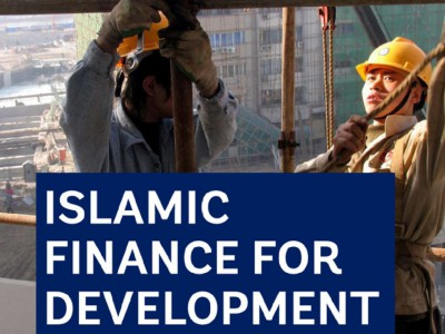 Sharia compliant finance for Development